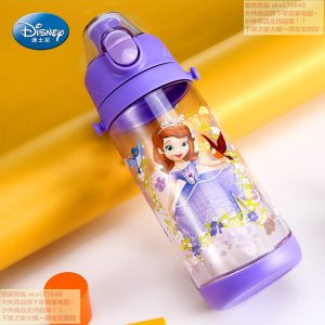 Disney Fairy Water Bottle