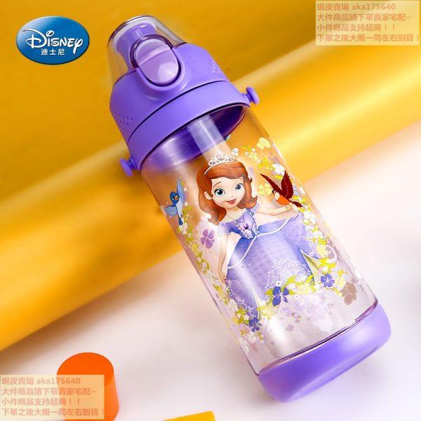 Disney Fairy Water Bottle