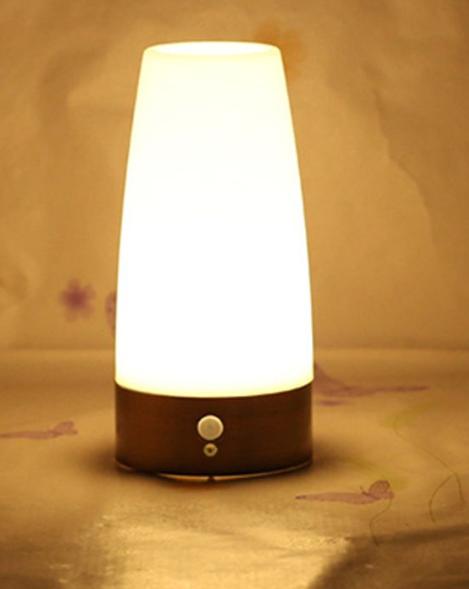 PIR Motion Sensor LED Light