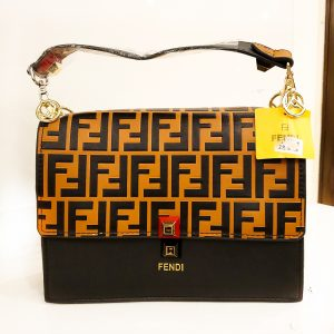 Fendi Ladies Bag Multi color